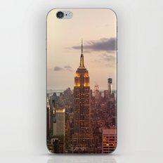 Skyline NYC iPhone & iPod Skin