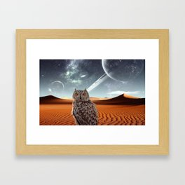Lone Owl Framed Art Print