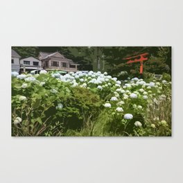Hydrangeas in Hakone Canvas Print
