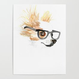 Chihuahua Hipster Poster