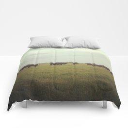 Fields Comforters