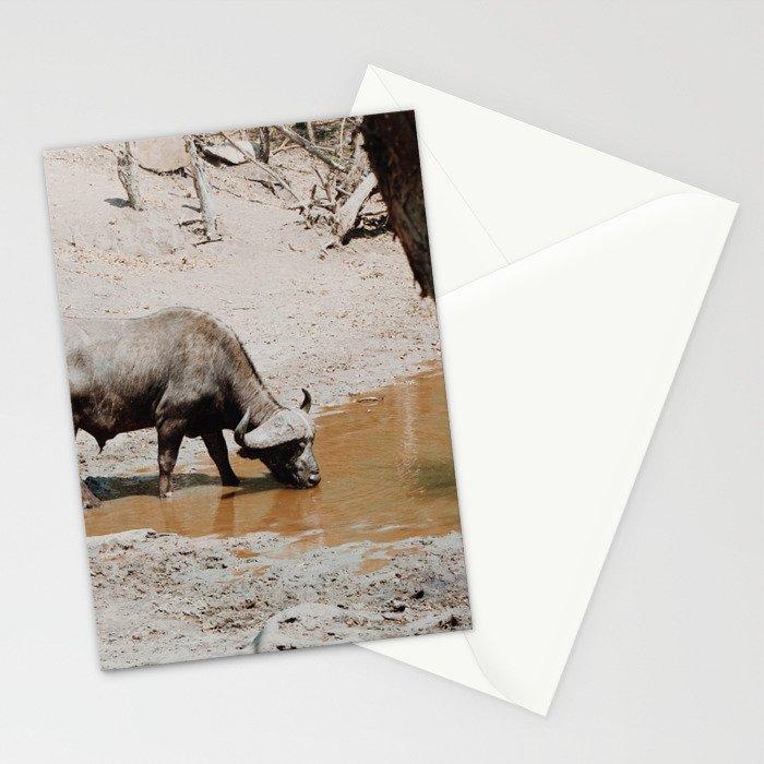 Water Buffalo Stationery Cards