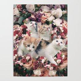 Cute Kitty Cat Flower Poster