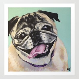 Portrait of Pug on Teal Art Print