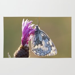 MARBLED WHITE BUTTERFLY ON KNAPWEED Rug