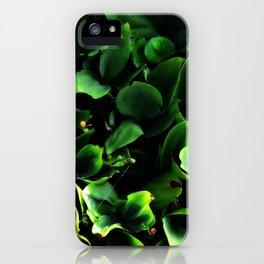 Hidden Gems iPhone Case
