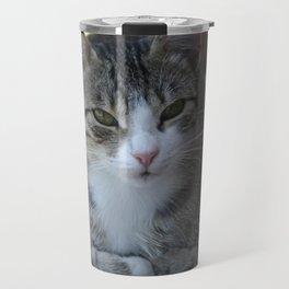 Cute Tabby Cat - Sitting On The Fence Travel Mug