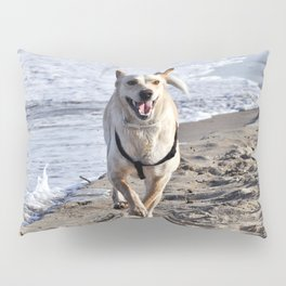 WHITE DOG in SICILY Pillow Sham