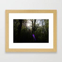 nel bosco Framed Art Print