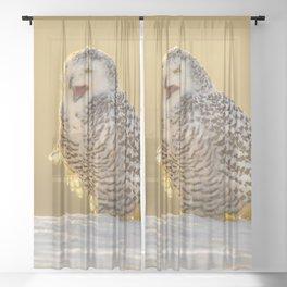 Snowy Owl Sheer Curtain