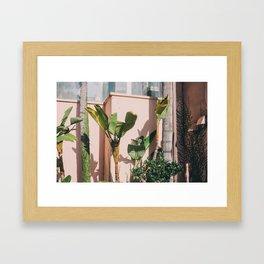 San Diego #2 Framed Art Print