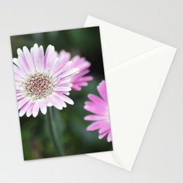 Longwood Gardens Autumn Series 308 Stationery Cards
