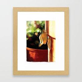 ChouChou.4 Framed Art Print