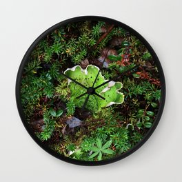 Lichen Light Wall Clock