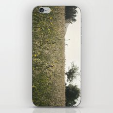 paisaje iPhone & iPod Skin