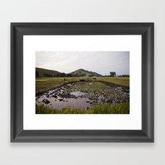 Rice paddy Framed Art Print