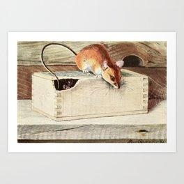 Fuertes, Louis Agassiz (1874-1927) - Burgess Animal Book for Children 1920 (Wood Mouse) Art Print