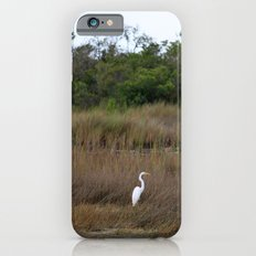 Swamp Song iPhone 6s Slim Case