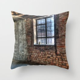 Wall and window Throw Pillow