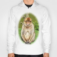 ape Hoodies featuring Barbary ape by Pirmin Nohr