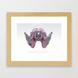 DISC12 Framed Art Print