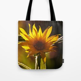 Sunflower at Sunset Tote Bag