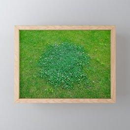 The grass is green Framed Mini Art Print