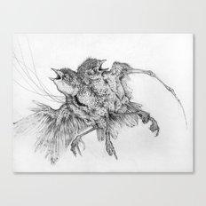 Specimen Canvas Print