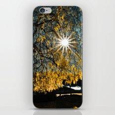The star iPhone & iPod Skin