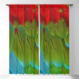 Catalina Macaw Feathers Blackout Curtain