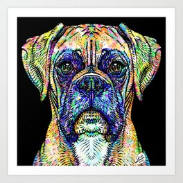 BOXER watercolor and ink portrait Art Print