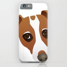 Jack Russell Terrier Portrait iPhone Case