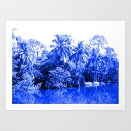 Florida in Blue Art Print
