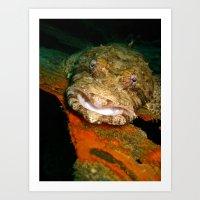 Smiling Crocodilefish Art Print