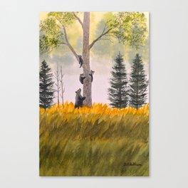 Bears In The Blue Ridge Mountains Canvas Print