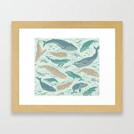 Whales Gathering II Framed Art Print