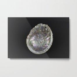 Abalone Shell Metal Print