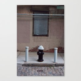 Hydrated Canvas Print
