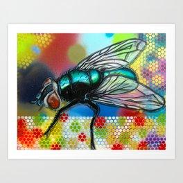 Fly 1 Art Print