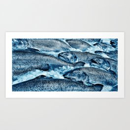 Pike Street Market Salmon by Crow Creek Coolture Art Print