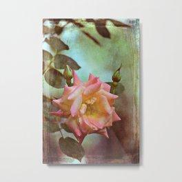 Rose 263 Metal Print