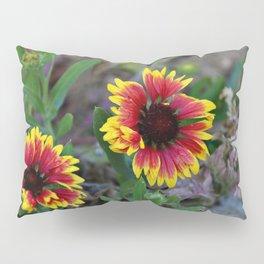 Garden gerbera Pillow Sham