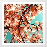 magnolia Art Prints featuring magnolia by blackpool