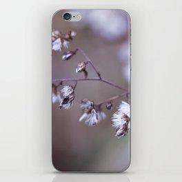 Secrets on the Wind iPhone Skin