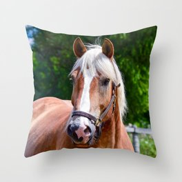 Equine Beauty Throw Pillow