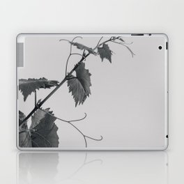 grape vine Laptop & iPad Skin