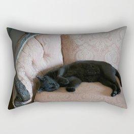 Hemingway's Cat on a Couch Rectangular Pillow