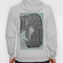 Sleepy Kitty Hoody