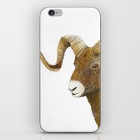 ram iPhone & iPod Skins featuring Ram by Jan Elizabeth