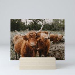 Brother Cows Mini Art Print